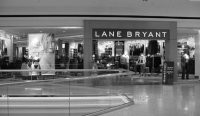 Lane Bryant will eliminate about 160 jobs at its corporate and divisional offices.
