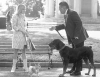 """In this scene from """"Legally Blonde 2,"""" Reese Witherspoon wears a Tocca coat and an Anya Hindmarch bag."""