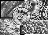 Clockwise from top left: Alan Litman's nylon and metallic polyester lace; Impala's animal-skin print on polyester; Santa Mistura's print on silk; Robert Kaufman's paisley print on cotton and spandex; Euromaglia's wool and...
