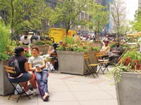 The Fashion Center Business Improvement District opened the Summer Garden in May 1998, in the plaza of one of the BIDs commercial buildings.