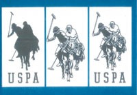 The U.S. Polo Association won the rights to use these logos.