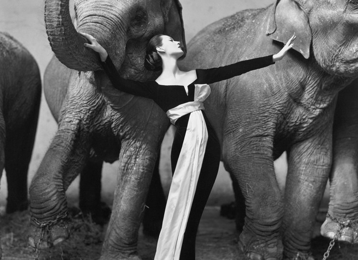 An image from the Richard Avedon retrospective.