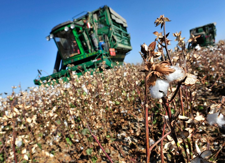 Global cotton production is expected to fall to 111.6 million 480-pound bales this year.