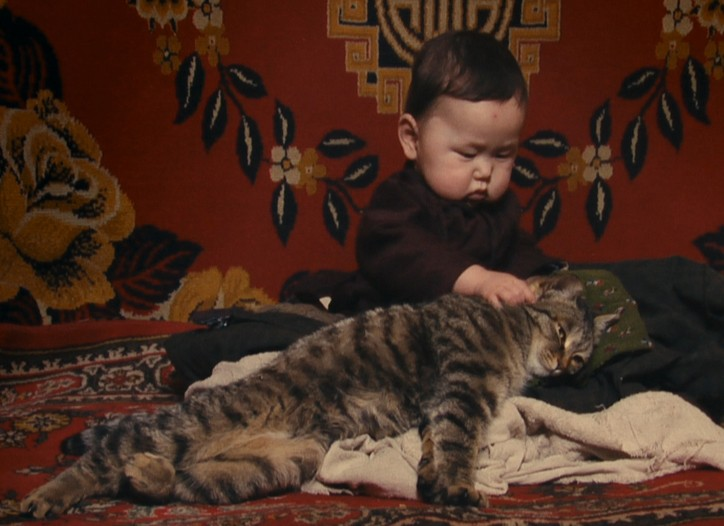 Bayar playing with his cat at home in Mongolia.