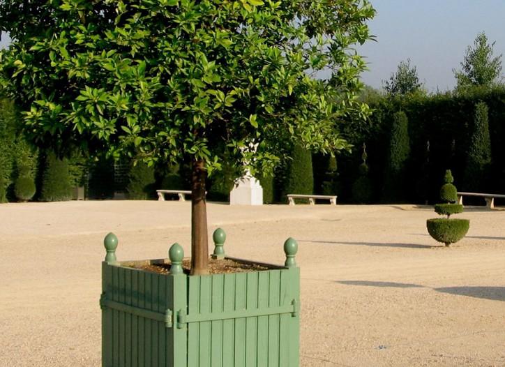 A planter at Les Jardins du Roi Soleil.