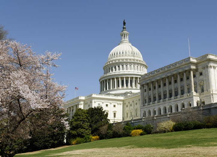 A divided Congress begins a new session this week.