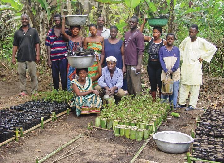 Iris farmers in Togo, Africa.