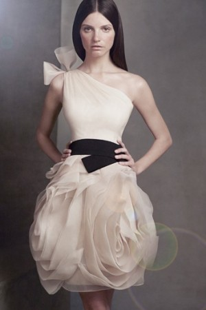 A bubble skirt dress from White by Vera Wang for David's Bridal.