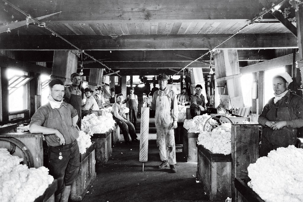 1916: Seeking cotton sturdy enough to make tire cord, Goodyear invests in pima production.