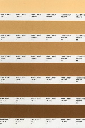 A range of different nude-tone shades.