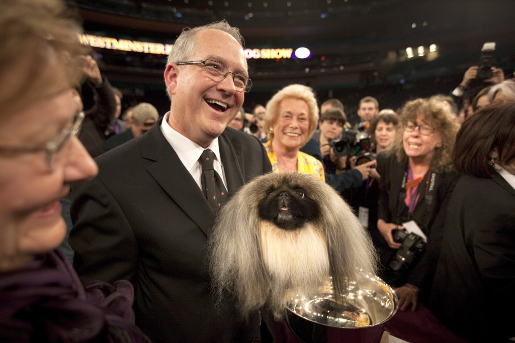 Co-owner and handler David Fitzpatrick holds Pekingese Malachy after winning Best in Show at the Westminster Kennel Club Dog Show.