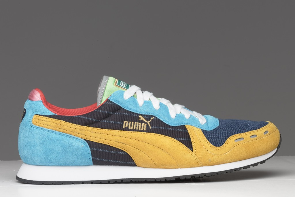 A shoe from Puma.
