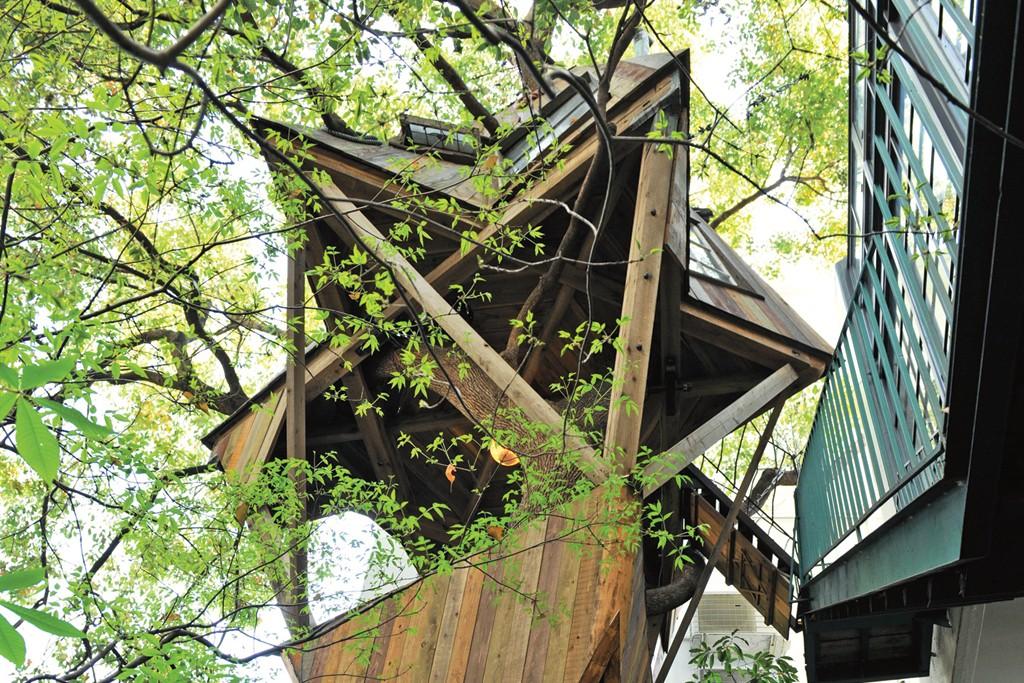 The tree house behind Adam et Ropé Biotop.