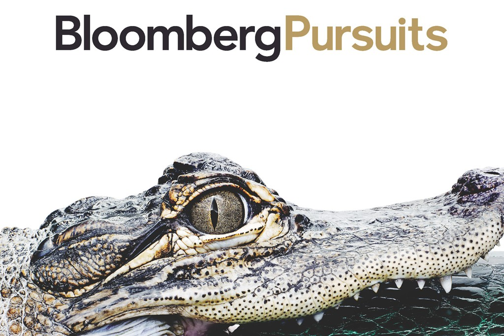 Cover of redesigned Bloomberg Pursuits.