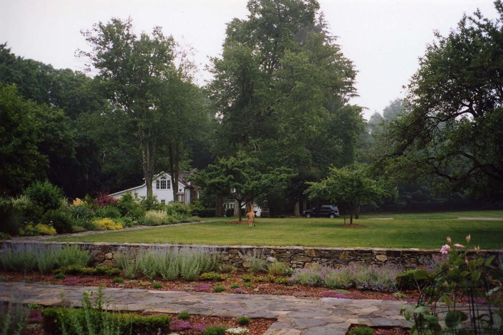 The apple orchard at Cloudwalk, the von Furstenberg estate.