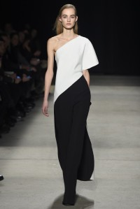Narciso Rodriguez RTW Fall 2015