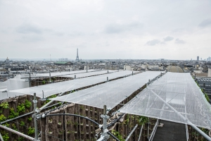 The rooftop garden at the Galeries Lafayette flagship in Paris