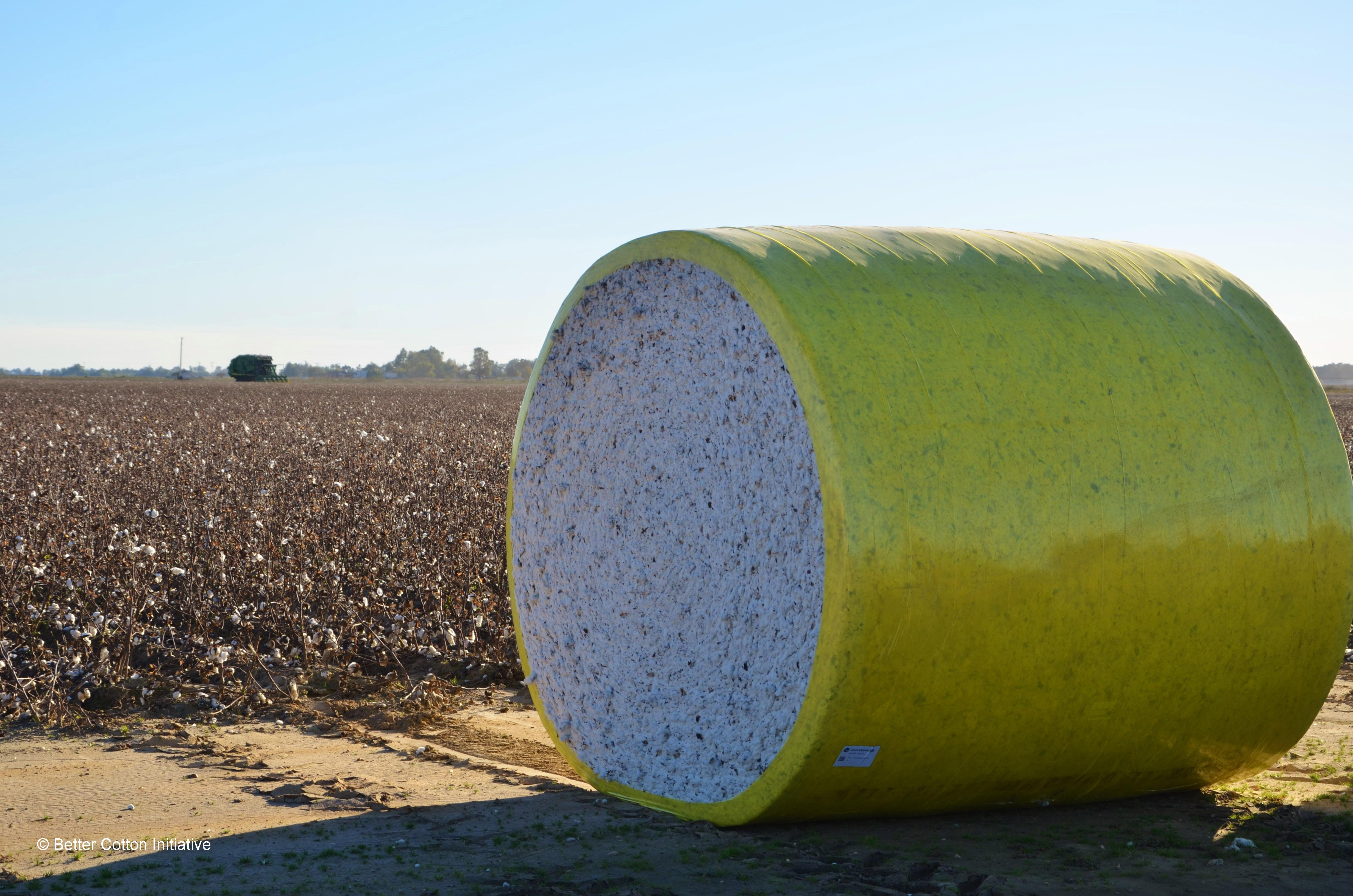 Cotton Bale USA