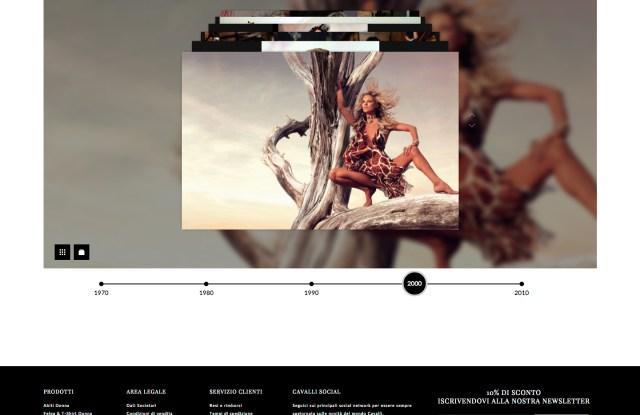 Roberto Cavalli's new website.