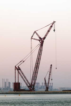 The wholesale hub will be located near the Jebel Ali Port.