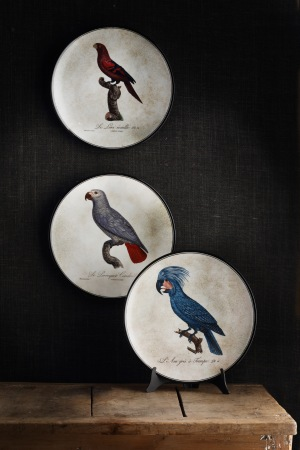Plates from Richard Ginori new collection.
