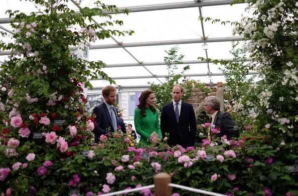 Duke of Cambridge Duchess of Cambridge Prince Harry