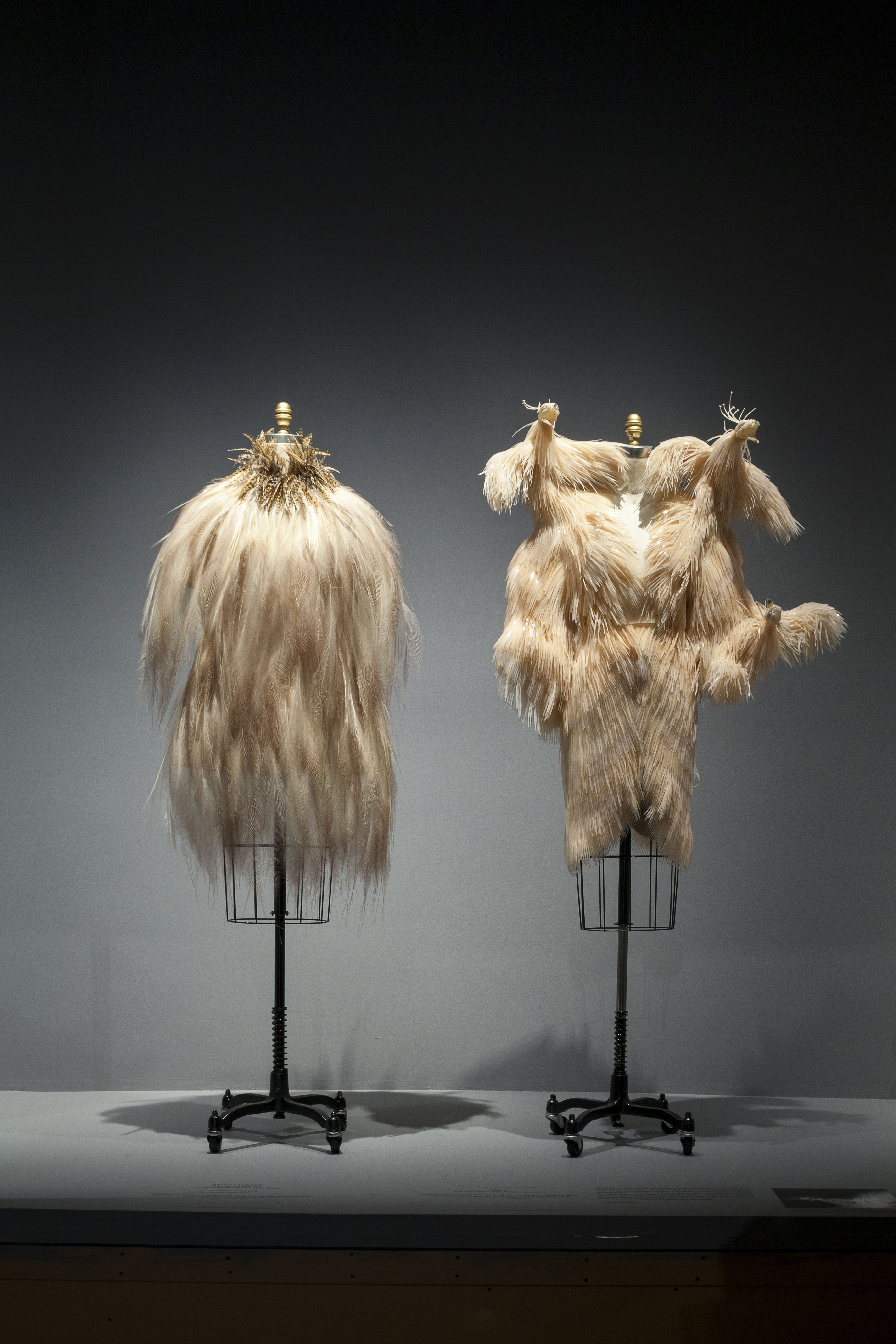 An Iris van Herpen dress made of laser-cut silicone feathers and hand-applied silicone-coated gull skulls.