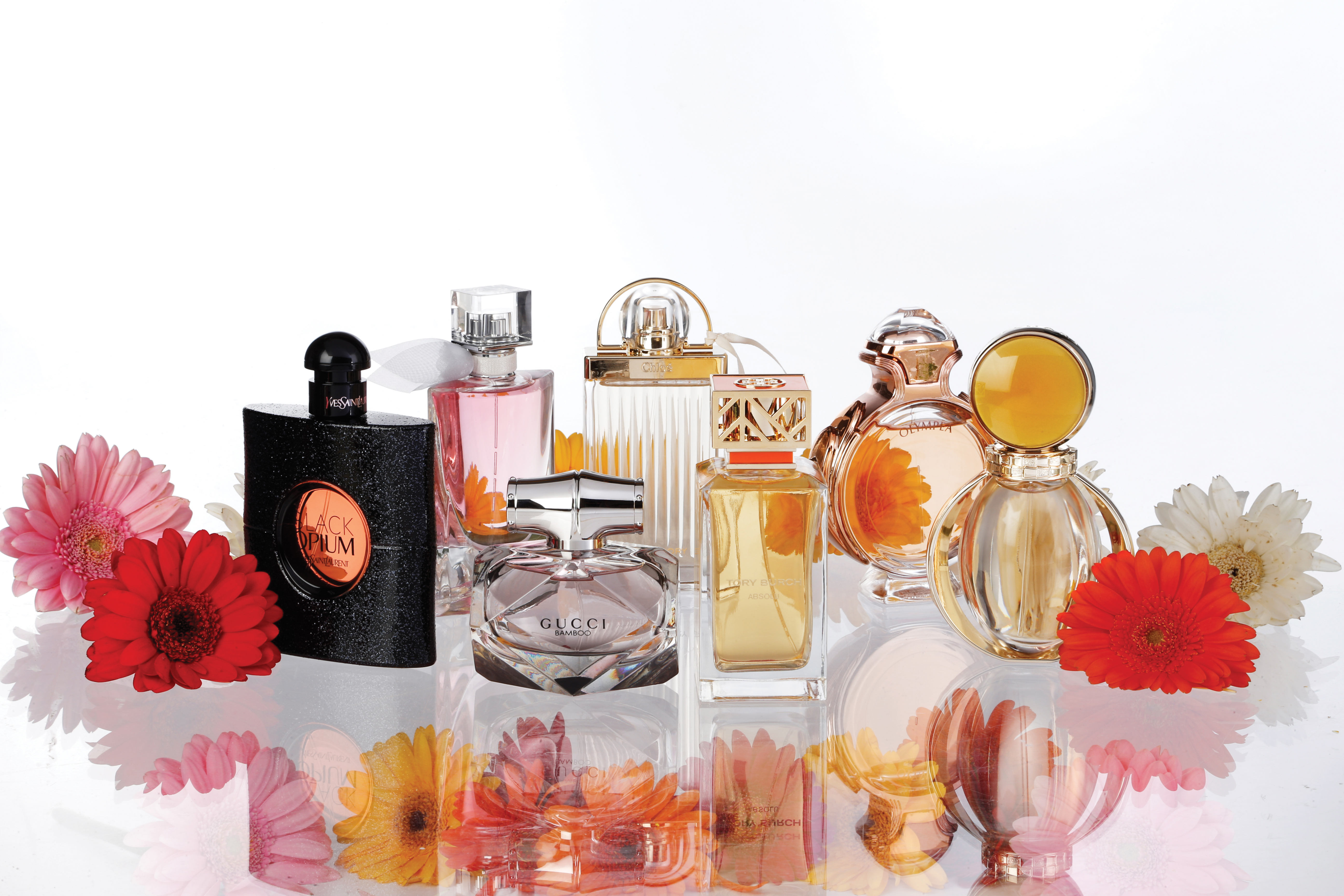 Some of the top women's fragrance launches of the last year.