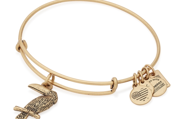 A bracelet from Alex and Ani