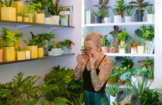 Anna Sheffield has shared her favorite small businesses with For New York.