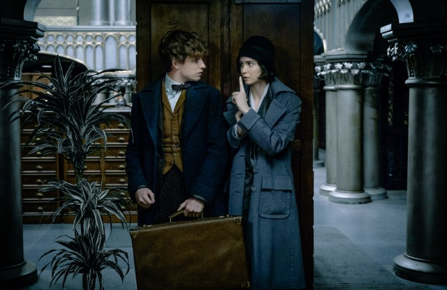 Eddie Redmayne and Katherine Waterston in a still from the movie 'Fantastic Beasts and Where to Find Them'