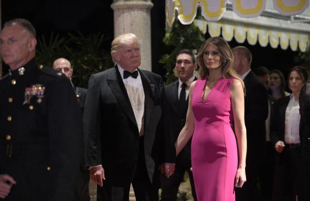 First Lady Melania Trump in Dior Dress