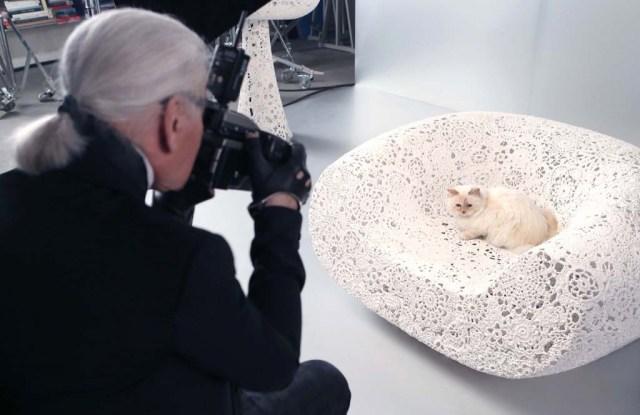 Karl Lagerfeld photographs Choupette.