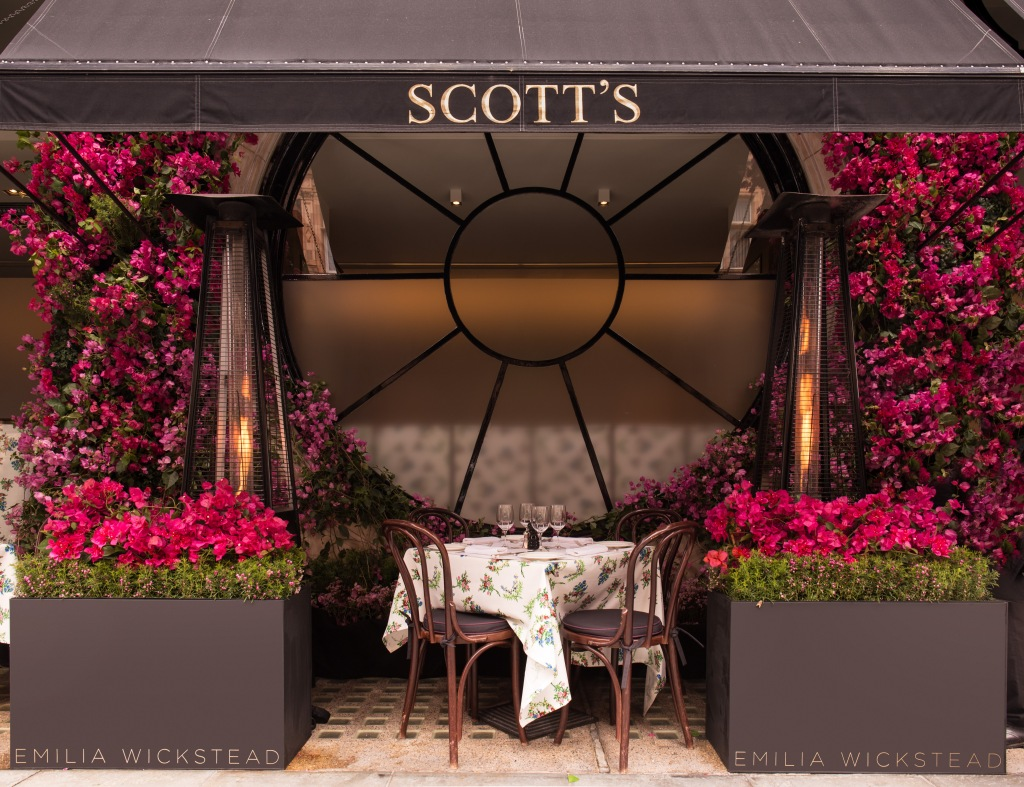 Emilia Wickstead terrace Scott's