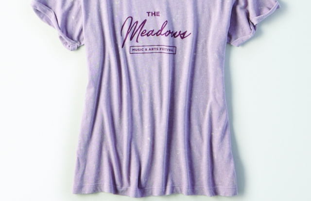 A Meadows T-shirt from American Eagle Outfitters.