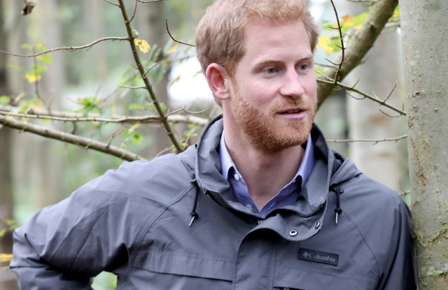 Prince Harry during a visit to Myplace at Brockholes Nature Reserve, a project which aims to empower young people by encouraging them to take action in environmental activitiesPrince Harry visit to Preston, Lancashire, UK - 23 Oct 2017
