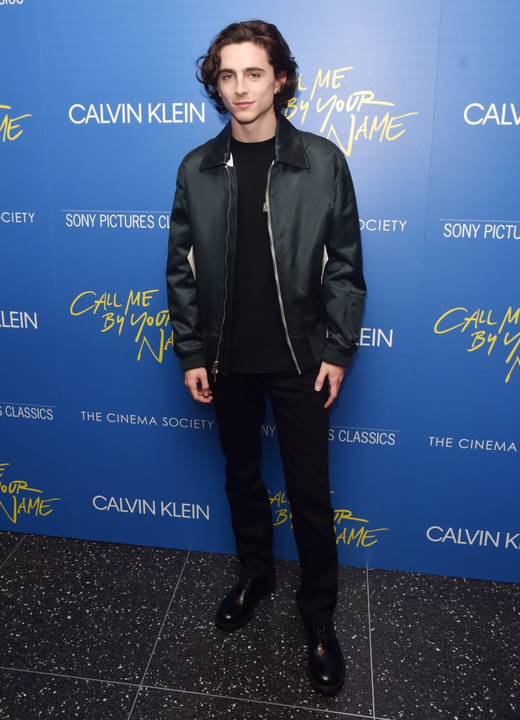 Timothee Chalamet'Call Me By Your Name' film screening, Arrivals, New York, USA - 16 Nov 2017
