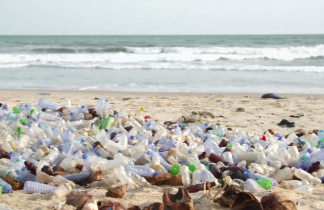 An image from the IFF's new video about sustainability.