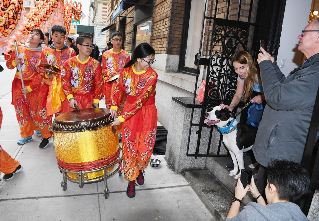 NEW YORK, NY - FEBRUARY 10: Members of the New York United Lion and Dragon Dance Troupe perform during Madison Street To Madison Avenue: A Lunar New Year Celebration on February 10, 2018 in New York City. (Photo by Dave Kotinsky/Getty Images for East Midtown Partnership)