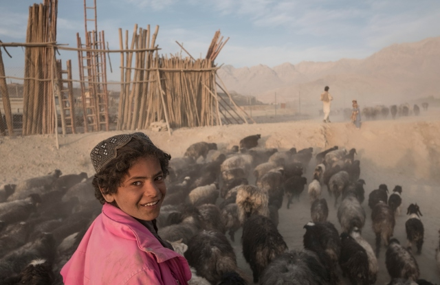 An image of boys tending to their flock in Afghanistan.