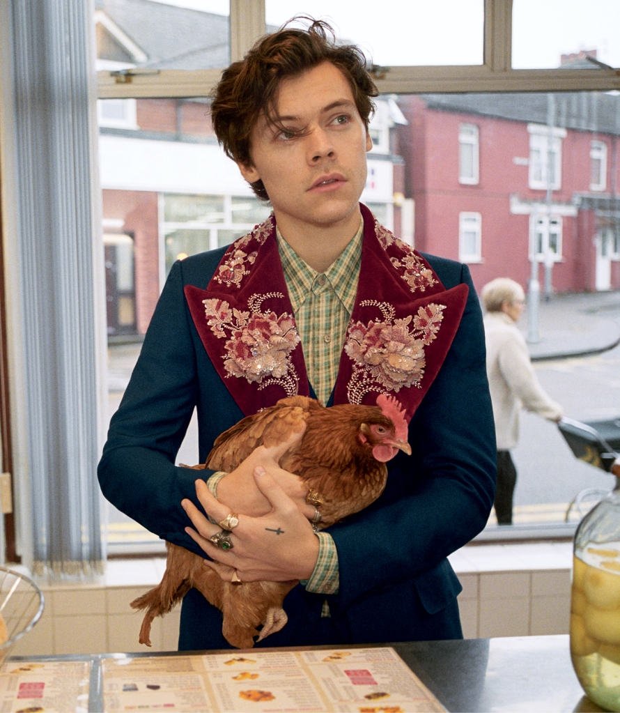 Harry Styles in Gucci's men's tailoring ad campaign.