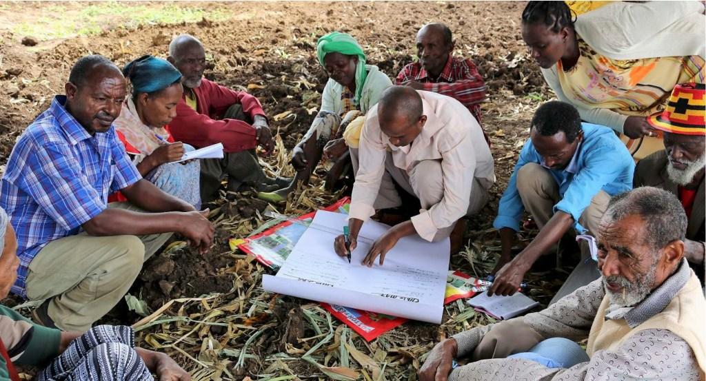 A Farmer Field School in Ethiopia.