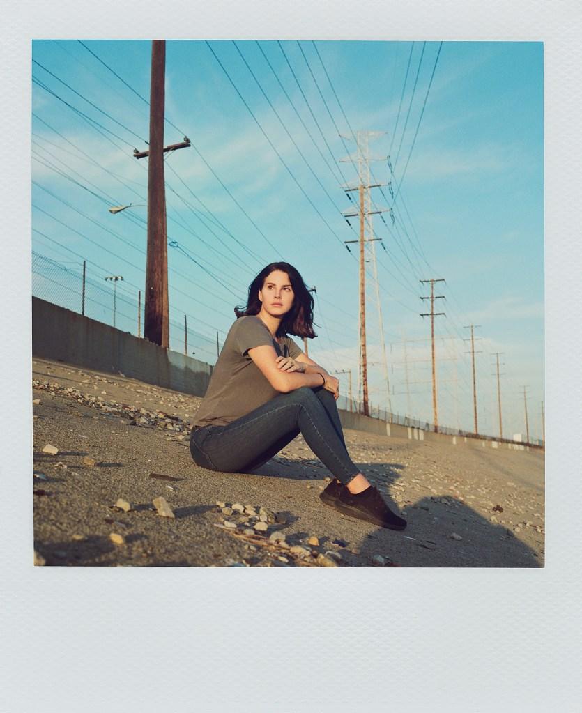"Lana Del Rey album art for ""Venice B--h"""