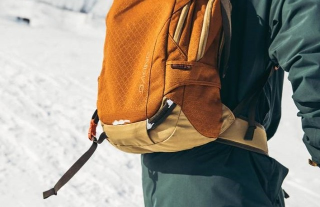 A backpack from Dakine.