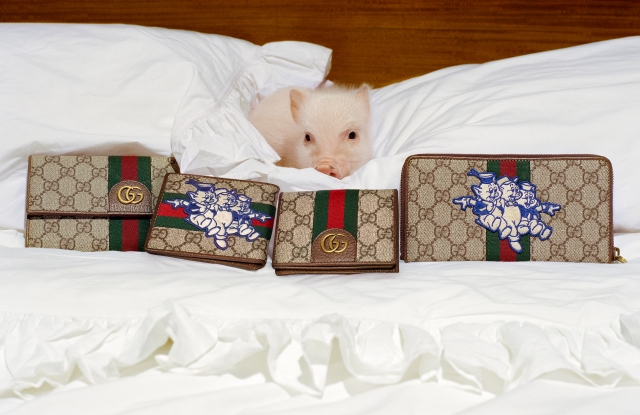 Gucci's capsule collection celebrating the Chinese New Year.