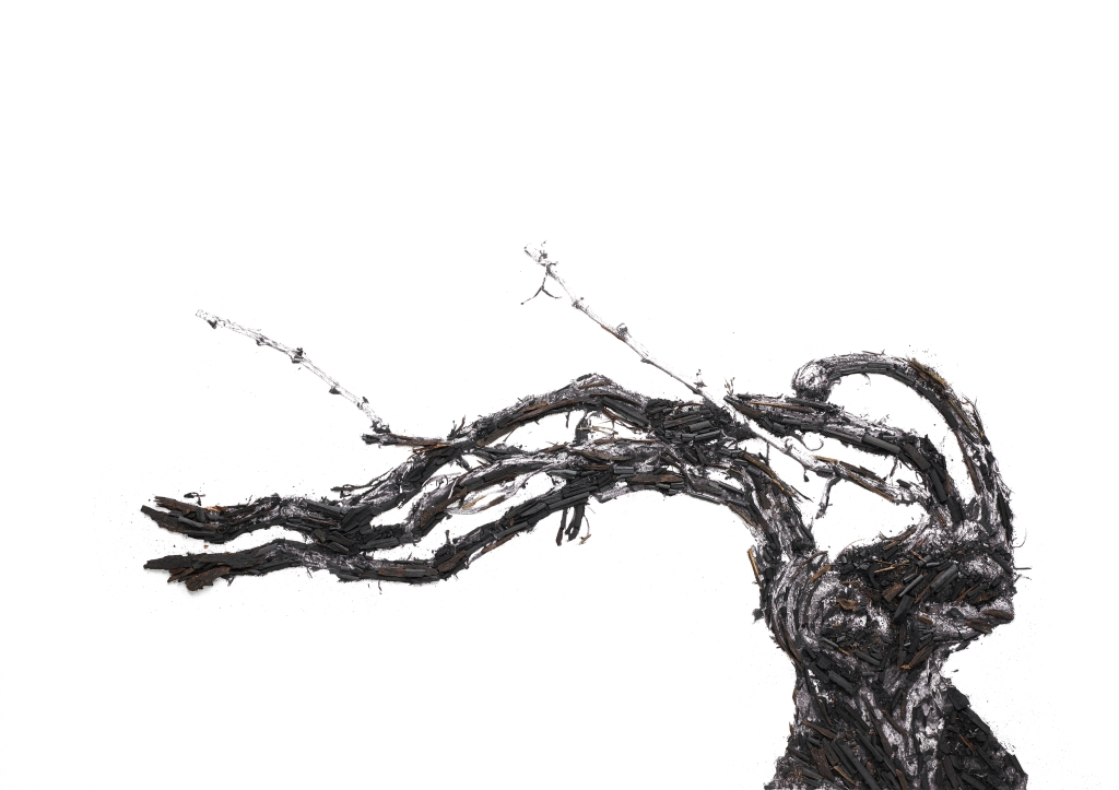 """""""Shared Roots"""" by Vik Muniz and Ruinart"""
