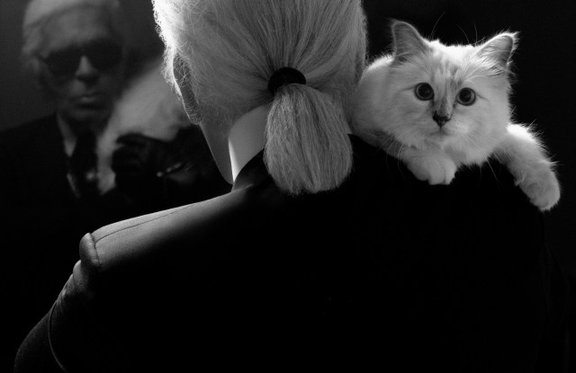 Karl Lagerfeld with Choupette.