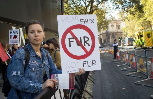 "PETA demonstrators in cat outfits celebrate a ""No Fur"" fashion week last fall in London."