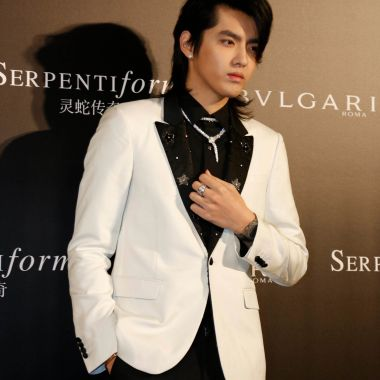 Singer Kris Wu at the opening of the 'Serpenti Form' exhibition.