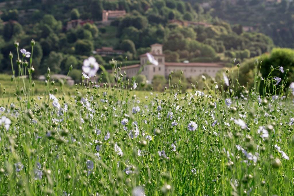 Linificio Canapificio Nazionale's linen plantation located in Villa D'Almè, Bergamo.